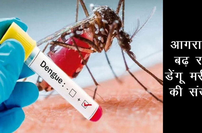 3 new dengue patients found in Agra on Wednesday, Know full details here#agranews