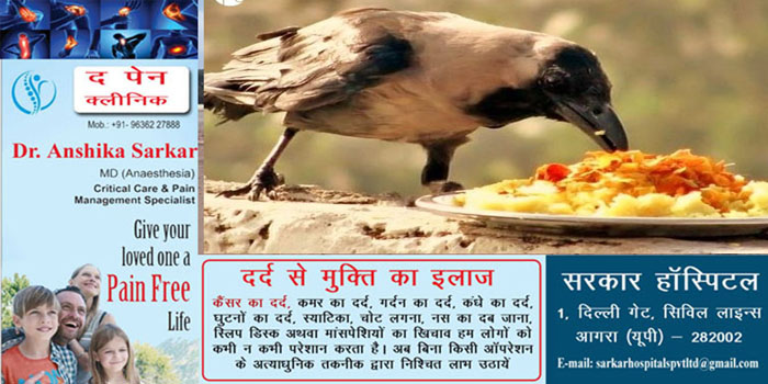 Know the importance of feeding crows in Shradh #agranews